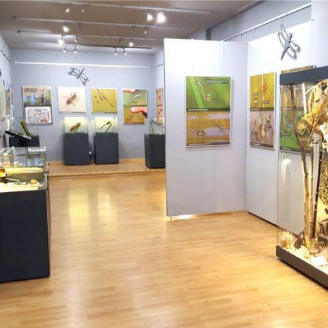 WYBRANE REALIZACJE galeria